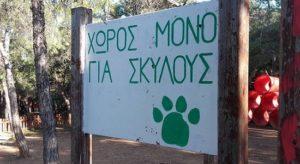 Παγκόσμια Ημέρα των Ζώων: Ο δήμος Παπάγου - Χολαργού κοντά στα αδέσποτα και τα κατοικίδια