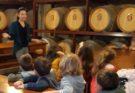 Σε βιωματική εκπαιδευτική δραστηριότητα, συμμετείχαν με επιτυχία τα προνήπια των Δημοτικών Παιδικών Σταθμών Δήμου Αμαρουσίου