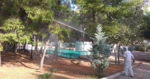 Βιολογική καταπολέμηση της πιτυοκάμπης από τον Δήμο Παπάγου - Χολαργού