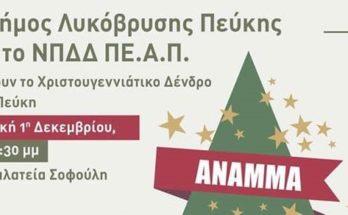 Τάσος Μαυρίδης: Σας περιμένουμε όλους , μικρούς και μεγάλους , στο ΑΝΑΜΜΑ ΤΟΥ ΧΡΙΣΤΟΥΓΕΝΝΙΑΤΙΚΟΥ ΔΕΝΤΡΟΥ !