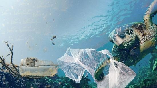 Φοιτήτριες δημιούργησαν βακτήριο που τρώει τα πλαστικά από τις θάλασσες, μετατρέποντας τα σε νερό
