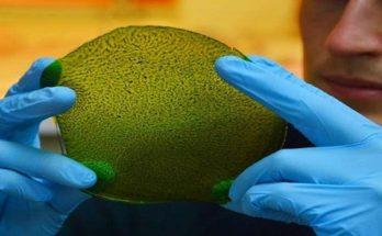 Ερευνητές ανέπτυξαν ένα «τεχνητό φύλλο» που θα μετατρέπει με φθηνό τρόπο το βασικό «αέριο του θερμοκηπίου», το διοξείδιο του άνθρακα, σε χρήσιμα εναλλακτικά καύσιμα (μεθανόλη).