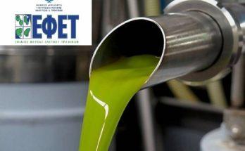 Ο ΕΦΕΤ εντόπισε εταιρείες που χρωμάτιζαν το σπορέλαιο και το πούλαγαν για ελαιόλαδο.