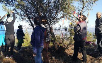 Δήμος Πεντέλης : Πρωτότυπη πεζοπορία με τίτλο «υποδεχόμαστε τα Χριστούγεννα στο Πεντελικό»