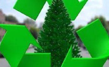 Δήμος Φιλοθέης-Ψυχικού: Συγκέντρωση χριστουγεννιάτικων δέντρων από τον Δήμο για κομποστοποίηση