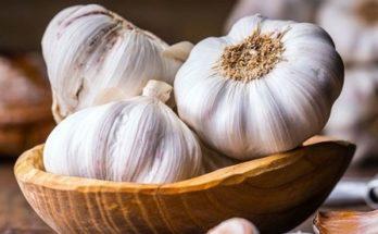 Ερευνά: Ποια ανθεκτικά μικρόβια σκοτώνει το σκόρδο