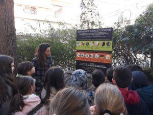 Δράσεις του Δικτύου Συνοικιακής Κομποστοποίησης Re:Think του Δήμου Βριλησσίων