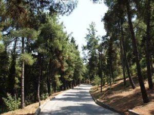 Παπάγου – Χολαργός: Κλειστά από το Σάββατο 21 Μαρτίου το πάρκο «Στρατ. Αλεξ. Παπάγου» και το άλσος «Α. Παπανδρέου».