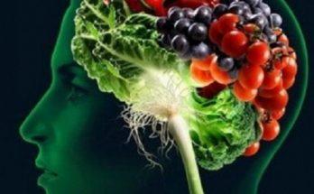 Έρευνα: Οι συνδυασμοί τροφών που καταστρέφουν τον εγκέφαλο