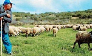 Στηρίξτε τους κτηνοτρόφους και τον πρωτογενή τομέα