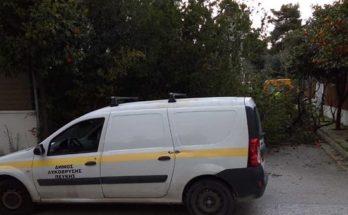 Λυκόβρυση Πεύκη: Οι δυνατοί άνεμοι έριξαν δέντρα σε διάφορα σημεία της πόλης