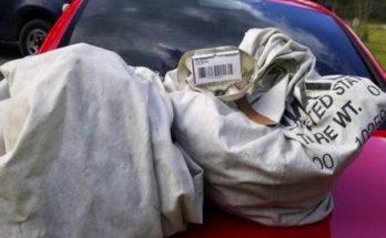 ΗΠΑ: Οικογένεια βρήκε ένα εκατομμύριο δολάρια και τα παρέδωσε στην αστυνομία
