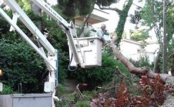Κηφισιά: Πτώση δέντρου τα ξημερώματα στην οδό Παπαφλέσσα κ Ρωμυλίας