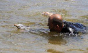 Ουρουγουάη: Μια οργάνωση διάσωσης υιοθέτησε ένα νεογέννητο ορφανό δελφίνι