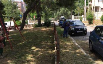 Πεντέλη : Συνεχίζονται οι αποψιλώσεις της Υπηρεσίας Πρασίνου και στις 3 Δημοτικές Ενότητες καθημερινά