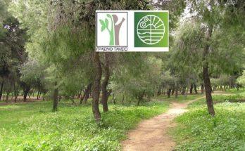 Λυκόβρυση Πεύκη: Πρόταση στο Πρόγραμμα Αστικής Αναζωογόνησης του Πράσινου Ταμείου υπέβαλε ο Δήμος