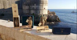 """Κροατία : """"Edivo Vina"""" Η κάβα που το κρασί της ωριμάζει στον πάτο της θάλασσας"""