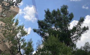 Πεντέλη: Επιστολή της Δήμαρχου Δήμητρας Κεχαγιάς προς τον Υπουργό Περιβάλλοντος και Ενέργειας Κωστή Χατζηδάκη και τον ΔΕΔΔΗΕ για την υπογειοποίηση του δικτύου ηλεκτροδότησης