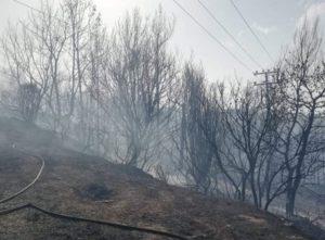 Βύρωνα : Φωτιά βρίσκεται σε εξέλιξη αυτή την ώρα στον Καρέα