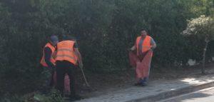 Διόνυσος: Συνεχίζεται καθημερινά το νοικοκύρεμα του Δήμου