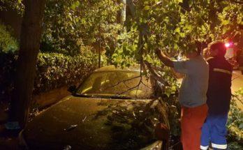 Παπάγος Χολαργός: Επί της οδού Ναυρινου έσπασε μεγάλο κλαρί από δέντρο και έπεσεεπάνωσε σταθμευμένοαυτοκίνητο