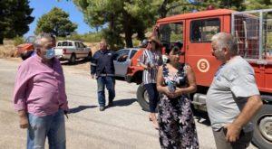 Πεντέλη: Στο πλευρό της Νέας Μάκρης ο Δήμος Πεντέλης για την αντιμετώπιση της πυρκαγιάς