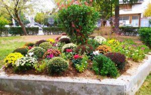 Παλλήνη: Δυο όμορφοι, μικροί ανθόκηποι που θα είναι ανθισμένοι όλο τον χρόνο, στολίζουν πλέον το κέντρο της πόλης