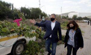 Περιφέρεια Αττικής: Εφαρμογή «πράσινων» πρακτικών από την Περιφέρεια στη διαχείριση οργανικών αποβλήτων από τη φυσική καταστροφή στα Β. Προάστια