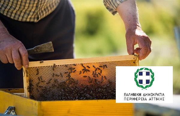 Λυκόβρυση Πεύκη «Ενημέρωση μελισσοκόμων για την ετήσια δήλωση διαχείμασης κυψελών»