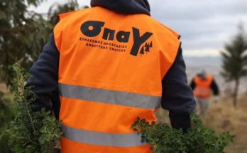 ΣΠΑΥ: Στην περιοχή της Ηλιούπολης από νωρίς το πρωί φυτεύτηκαν 1000 δενδρύλλια από συνεργείο του Συνδέσμου