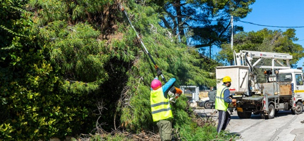 Κηφισιά: Με σχεδιασμό και πρόγραμμα πραγματοποιείται η απομάκρυνση των πεσμένων δένδρων και κλαδιών στο Δήμο