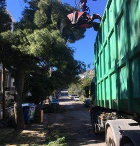 Πεντέλη: Συνεχίζετε η μεγάλη προσπάθεια για την απομάκρυνση των κομμένων δέντρων και κλαδιών που άφησε πίσω της η κακοκαιρία