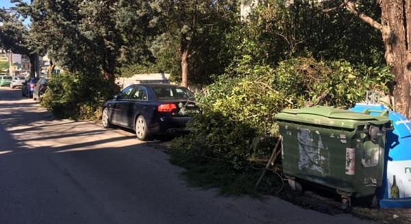 Πεντέλη: Τα συνεργεία του Δήμου εργάζονται συνεχώς για την απομάκρυνση των κομμένων δέντρων και κλαδιών που άφησε πίσω της η κακοκαιρία