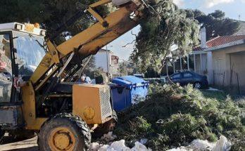 ΣΠΑΠ: Ο Σύνδεσμος συνδράμει τον Δήμο Πεντέλης με μικτό συνεργείο από μηχανήματα της Περιφέρειας Αττικής, εθελοντές και εργαζομένους του στο μάζεμα των κλαριών