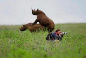 Αστείες φωτογραφίες από το fd