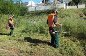 Διόνυσος: Ανακοίνωση «Έκκληση του Δήμου για τον καθαρισμό Οικοπέδων και Ακάλυπτων Χώρων»