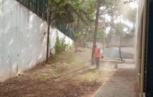 Πεντέλη: Παρεμβάσεις καθαριότητας και καλλωπισμού στα σχολεία
