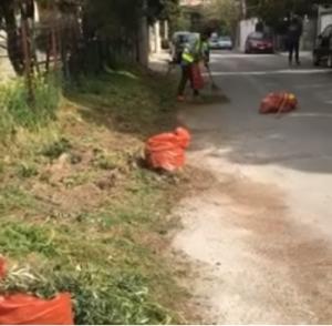 Πεντέλη: «Παρασκευή Καθαριότητας» Πραγματοποιήθηκε δράση στην δημοτική κοινότητα της Νέας Πεντέλης
