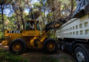 Κηφισιά: Προστασία των δασών του Δήμου από την Πολιτική Προστασία Κηφισιάς