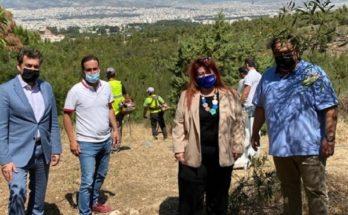 Φιλοθέη Ψυχικό: Εργασίες αποψίλωσης για την πρόληψη πυρκαγιάς στα Τουρκοβούνια