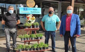Ηράκλειο Αττικής : «Παγκόσμια Ημέρα Περιβάλλοντος» Δράση στην κεντρική πλατεία του Δήμου