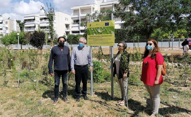 Μαρούσι: «LifeGrin» Ενημερωτική ημερίδα για τα τελικά στάδια υλοποίησης του πρότυπου χώρου αστικού πρασίνου στον Άγιο Θωμά
