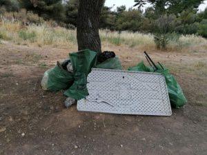 Νέα Ιωνία: Ο Δήμος και οι εθελοντές «Ομάδα Save Your Hood» της Νέας Ιωνίας καθάρισαν το άλσος Βεΐκου