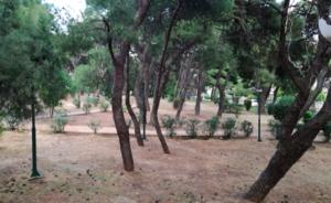 Πεντέλη: Προχωρά με γοργούς ρυθμούς στους καθαρισμούς των δασικών εκτάσεων της πόλης ο Δήμος