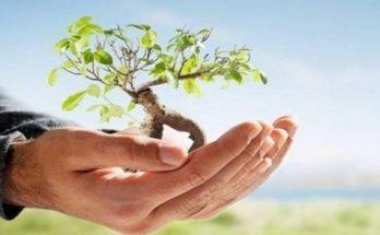 Παγκόσμια Ημέρα Περιβάλλοντος»