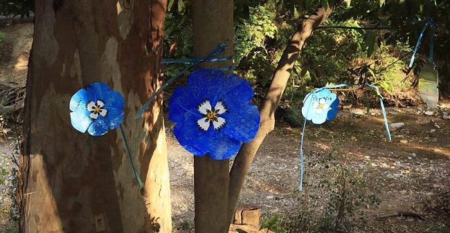Χαλάνδρι: Γέμισε μπλε παπαρούνες η Ρεματιά - Μικροί και μεγάλοι στη γιορτή για την Παγκόσμια Ημέρα Περιβάλλοντος