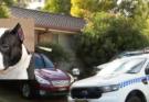 Αυστραλία: Το σκυλί της οικογένειας κατασπάραξε βρέφος μόλις 5 μηνών ενώ κοιμόνταν