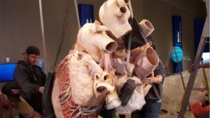 Μια καρδία που ζυγίζει πάνω από 400 κιλά