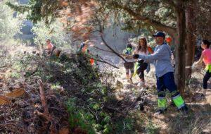 Το Δάσος Κεφαλαρίου αποτελεί ιδανικό χώρο περιπάτου και απόλαυσης της φύσης, συγκεντρώνοντας πολλούς επισκέπτες εντός και εκτός Δήμου