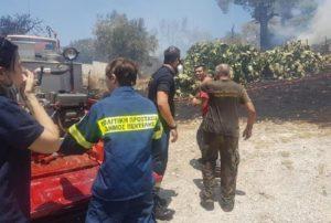 Πεντέλη: Άμεση ήταν η αντίδραση του Εθελοντικού κλιμάκιου του Δήμου Πεντέλης στην φωτιά που ξέσπασε στον Λόφο Παλλήνης